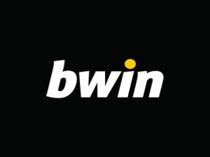 201371613530-bwin